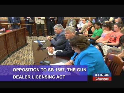 House Judiciary Hearing on Licensing of Gun Stores