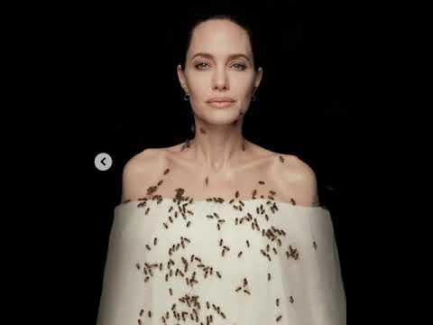 Опасная фотосессия Джоли