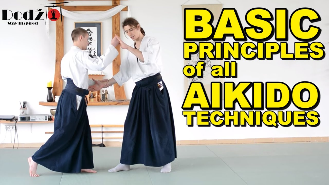 Aikido Tutorial Main Principles Of All Techniques Youtube