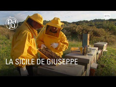 NAPOLIMAGAZINE.COM - Petrazzuolo, Bruno Giordano, Inler e Pavarese su Catania-Juventus from YouTube · Duration:  23 minutes 37 seconds