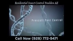 Residential Insect Control Paulden AZ