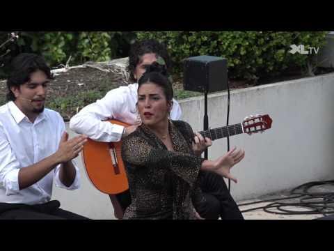 Arte Flamenco, ce sont aussi des spectacles de rue