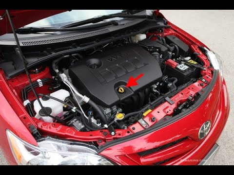 diy: how to oil change a 2009 - 2014 toyota corolla -