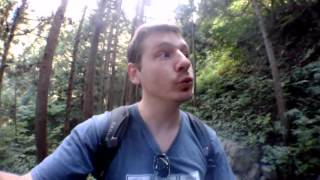 fun in japanese forest