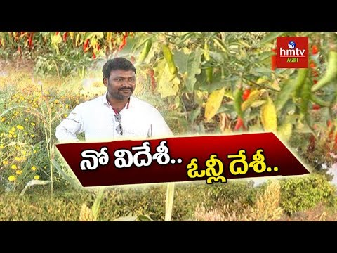 Natural Farming | Success Story Of Young Farmer Siva Prasad Raju | hmtv Agri