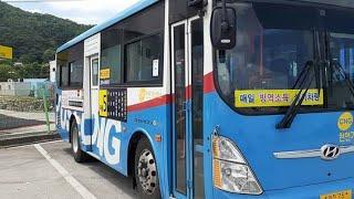 대전시내버스 마을 5번 주행영상