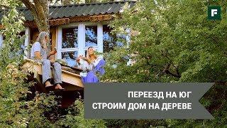 Экологичный дом на дереве в горах. Строим с друзьями своими руками