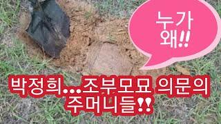 박정희 조부묘소에서 발견된 의문의 주머니들