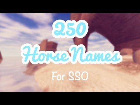 SSO | 250 Horse Name Ideas