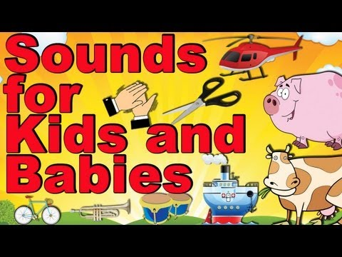 Transportation, Animals, Musicals, Home Stuffs, Body and more Sounds for Kids and Babies #