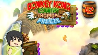 "Donkey Kong Country Tropical Freeze - Part 42: ""Above the Clouds"""