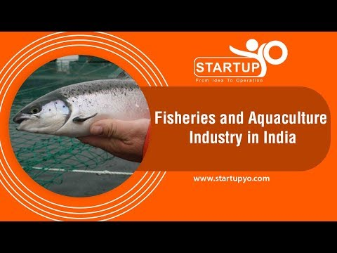 Fisheries And Aquaculture Industry In India - StartupYo | Www.startupyo.com