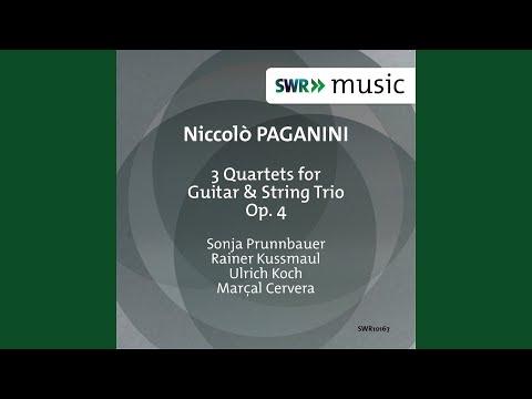 Guitar Quartet No. 2 in C Major, Op. 4 No. 2 MS 29: I. Moderato