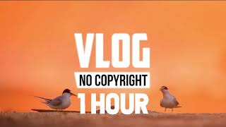 [1 Hour] - Alex Keeper - Can You Stay (Vlog No Copyright Music)