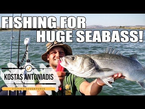 BEST! FISHING IN MY LIFE.. BIG FISH C@R TOP WATERS SEABASS GAME