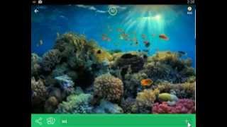 94 процента градуса ответы Картинка Океан