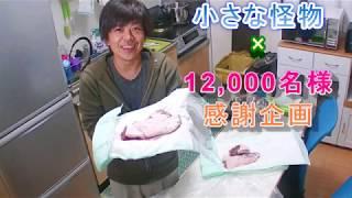 プレゼント内容~ ・イノシシ肉(1名様) 食べ方:基本的に豚肉と同じで...