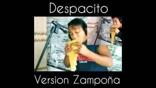 despacito version zampoña herwin valencia