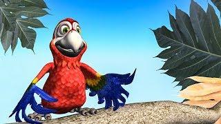 Funny Happy Birthday Song. Parrot Happy Birthday