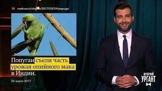 Вечерний Ургант  Новости отИвана  (28 03 2017)