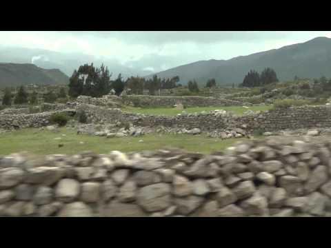 Peru Animals and Vistas