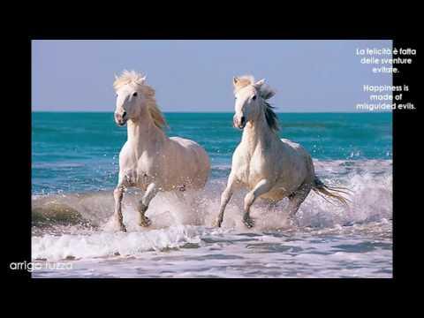 Happy Love. - L'Amore Felice.