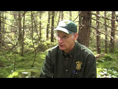 Wenlock Wildlife Management Area | Outdoor Journal