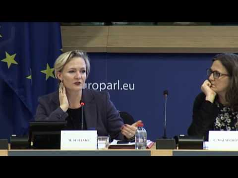 Digital trade hearing European Parliament 17 November 2016