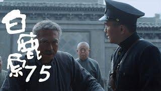 白鹿原 | White Deer 75【DVD版】(張嘉譯、秦海璐、何冰等主演)
