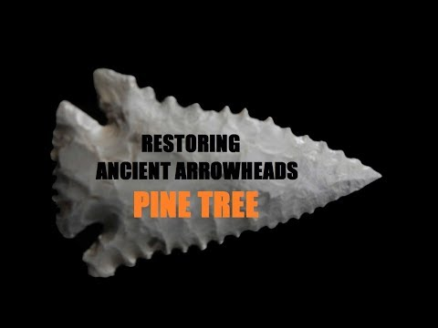Serrated Pine Tree RESTORED Ancient Discoveries American History Channel Antiques