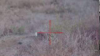 ATN X-Sight II HD Day/Night Scope охота на зайца (попадание 2)