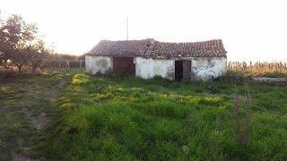 Dengiz fikr bilan yangilash uchun uy - Montesilvano, Abruzzo
