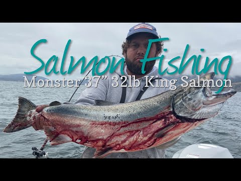 Golden Gate Salmon Fishing | Huge King Salmon Epic Fight - Ocean Salmon Trolling