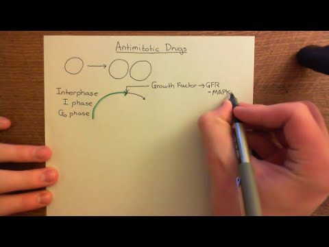 Anticancer Chemotherapy – Antimitotic Drugs Part 1