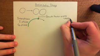 Anticancer Chemotherapy - Antimitotic Drugs Part 1