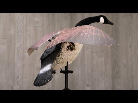 Luck Duck Lucky Flapper Canada Goose