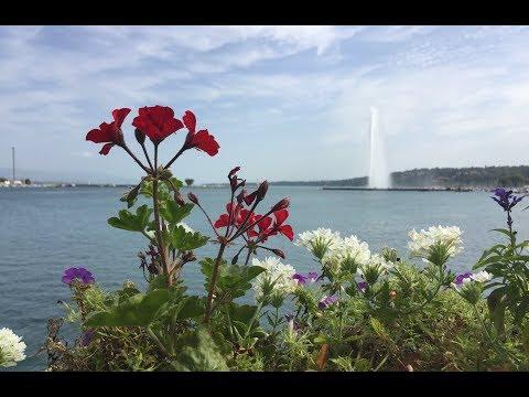 Switzerland - Summer 2017 (Rolle & Geneva)