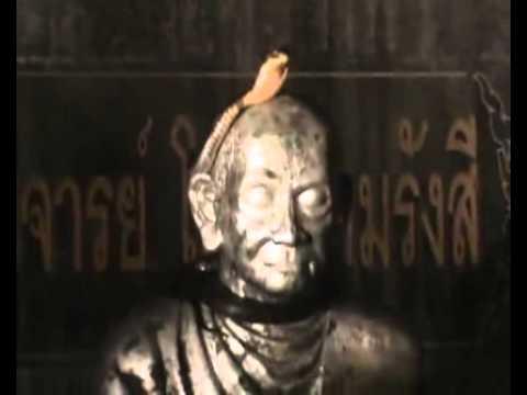 คลิป งูจงอางแผ่นาคปรก  บนรูปปั้นของสมเด็จพุฒาจารย์โต