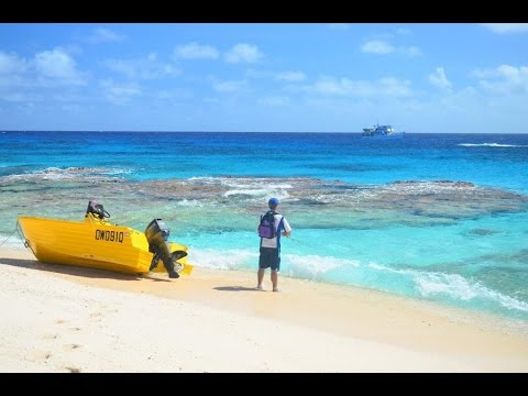 Coral Sea Fishing Video!! South Diamond Islet!!
