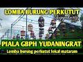 Lomba Perkutut Lokal Mataram Piala Gbph Yudaningrat Suara Burung Perkutut Lokal  Mp3 - Mp4 Download
