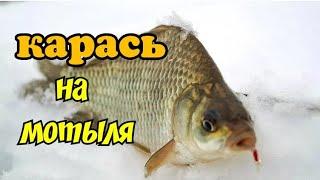 29 насосная канал Сатпаев Февраль 2020 Подводные съёмки Балық аулау 29 Сәтпаев сорғы каналы Full HD