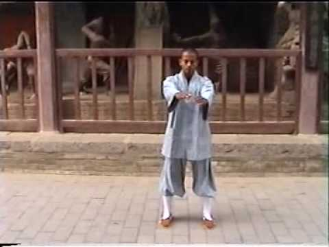 Shaolin India-Shifu Kanishka Training  Footage Inside Shaolin Temple Year 2003