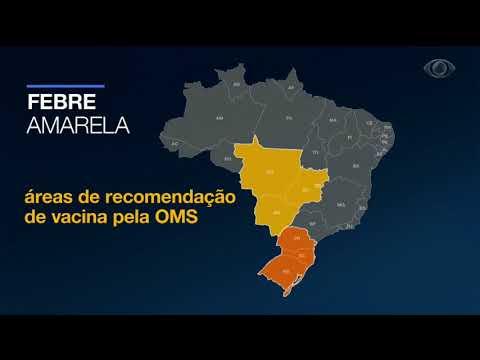 OMS Recomenda Vacina Da Febre Amarela Para O Sul