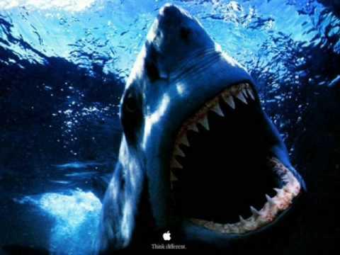 Osmi putnik-Da mi je biti morski pas - YouTube