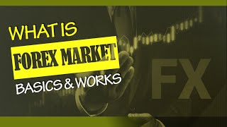Forex Market basics : What is Forex and how does It work?