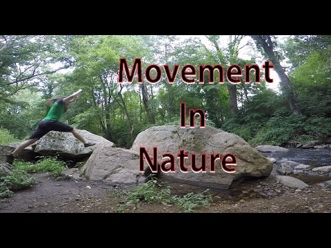 Nature Workout From Multiple Perspectives