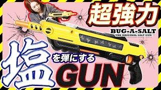 【バグアソルト2】塩を弾丸にする銃があまりの破壊力にビックリ!? 【MSSP/M.S.S Project】