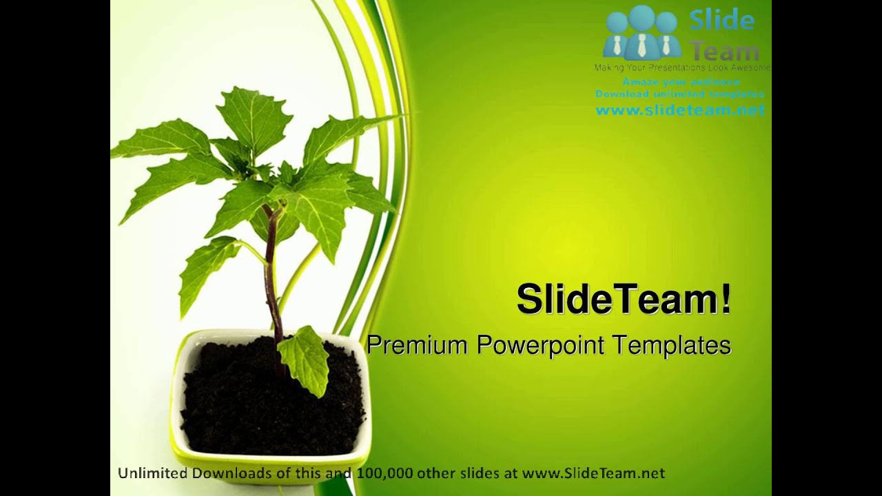 growing green plant nature powerpoint templates themes and, Powerpoint templates