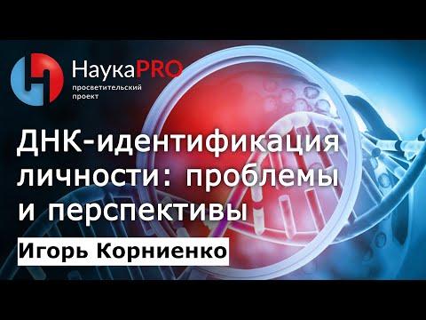 Игорь Корниенко - ДНК-идентификация личности: проблемы и перспективы