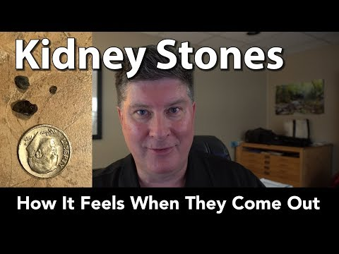 How To Pass A Kidney Stone In 24 Hours How To Pass Kidney Stones Fast At Home Youtube